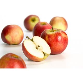 Apfel Red Jona