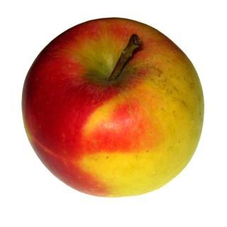 Apfel Rubinstar