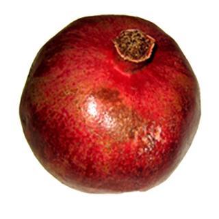 Granatäpfel Wonderful